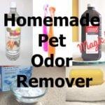 Homemade Pet Odor Remover For Carpet Cleaner