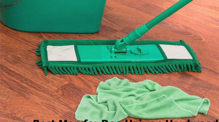 Best Mop for Dog Hair on Hardwood Floors