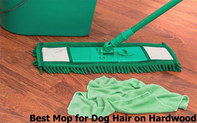 Best Mop for Dog Hair on Hardwood Floors