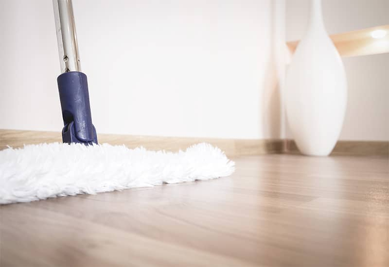 Top Mop for Laminate Floors Reviews