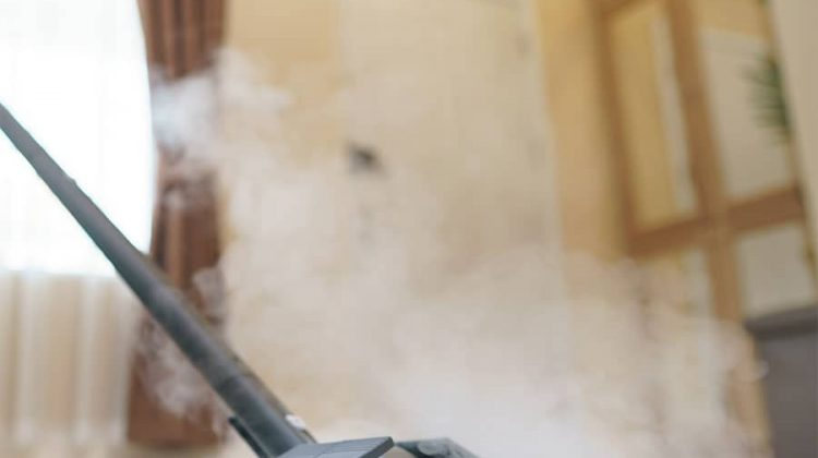 Tile-and-Grout-Steam-Cleaner