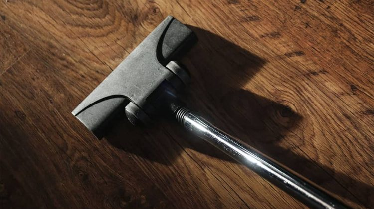Best Stick Vacuum For Pet Hair On Hardwood Floors