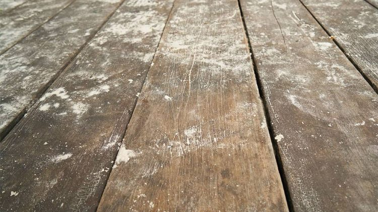 How to Clean Old Vinyl Floors